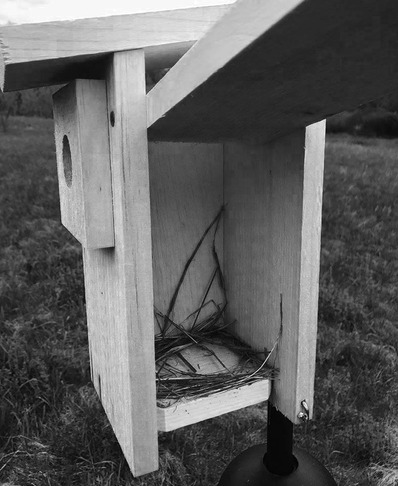open birdhouse