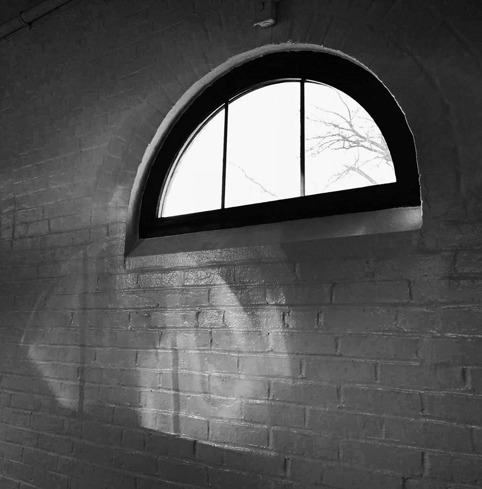 window and window light
